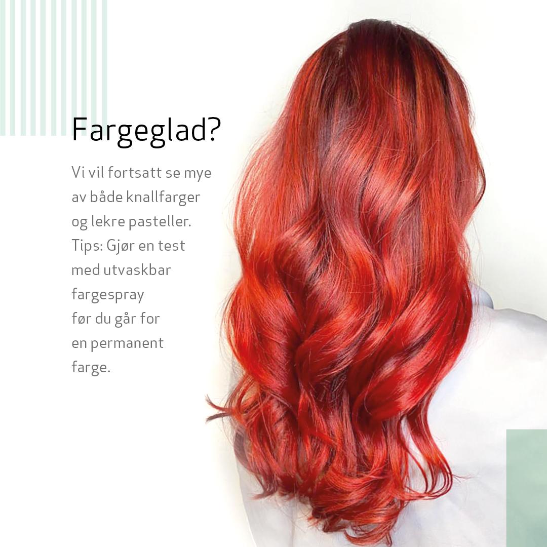 Josefsson 2020 dame farge